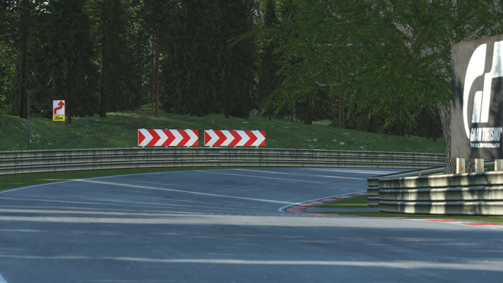 GRAB_554 Deep Forest Raceway for rFactor 2 – Previews