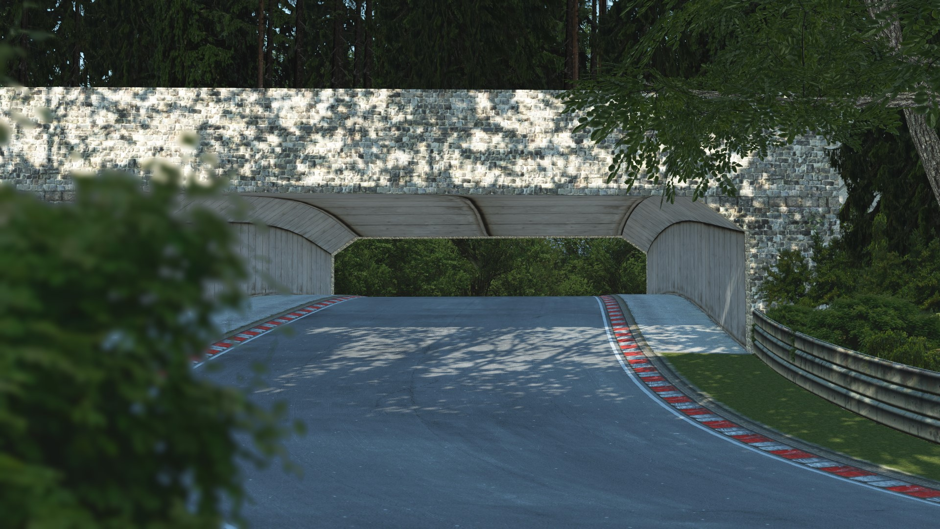 GRAB_555 Deep Forest Raceway for rFactor 2 – Previews